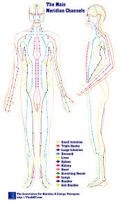Acupuncture Meridian Chart Free Download Pressure Points Body Online Charts Collection
