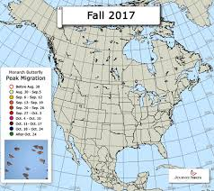 2017 Hummingbird Migration Chart Monarch Butterfly Migration Map Peak Migration Fall 2017