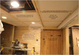 unfinished basement lighting. Ceiling:Unfinished Basement Lighting Ideas Drop Ceiling Unfinished Storage Family