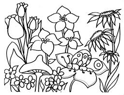 Small Picture Tropical Flower Coloring Pages Coloring Coloring Pages