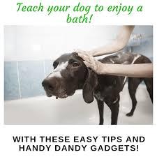 dogs bath buddy dog bath distraction toys lick pad makes easy and enjoyable for