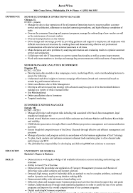 Ecommerce Resume Pdf Executive Examples Cv Commerce Experience