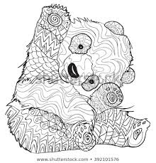 Hand Drawn Coloring Pages Panda Illustration Stock Vector Royalty