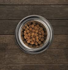 Eukanuba Large Breed Chicken Puppy Food