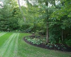 Small Picture 10 best Woodland Edge images on Pinterest Woodland garden