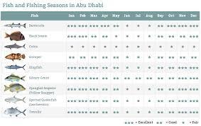 Hunting Season Chart The Best Fishing Season In Uae Fishfishme Blog