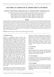 importance of museums essay healthy food