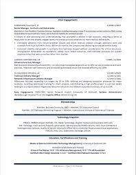 Cio Resume Sample Free Resume Example And Writing Download