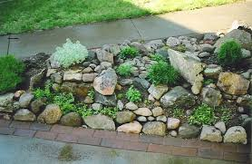 rock garden ideas plants small paving cool design planting