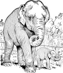 Small Picture Realistic Elephant Coloring Pages Coloring Coloring Pages