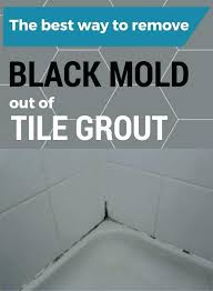 how to clean mold off wall how to clean mold from bathroom walls photo 1 of