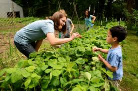 garden food. Gardens Not Only Teach Kids Where Their Food Comes From, But How To Eat Healthy Garden U