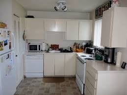 Small Picture Apartment Kitchen Ideas