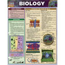 Biology Chart Quickstudy Bar Chart Biology