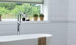 Pflanzen Fürs Bad Tipps Für Helle Und Dunkle Badezimmer Vivanno