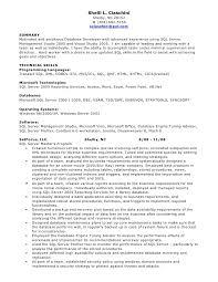 Sql Developer Resume Format Resume Template Ideas