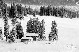 black and white snow photography.  Snow Black And White Photo Of Cabin In Woods By Andy Long And White Snow Photography