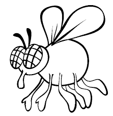 Small Picture Fly coloring page Animals Town Free Fly color sheet