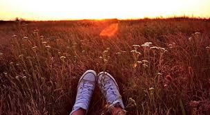 Zitat über Sonnenstrahlen Weg Reichtum Und Leben