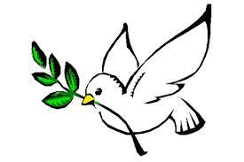 Resultado de imagen para foto paloma de la paz