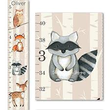 Woodland Fox Raccoon Owl And Deer Canvas Boys Or Girls Growth Chart