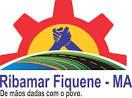 imagem de Ribamar Fiquene Maranhão n-19