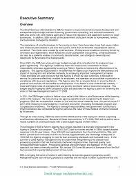 Best Executive Summary Newest Executive Summary Example Of Business Plan Best Executive 18