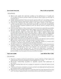 Senior Auditor Resume Objective Cover Objectiv Penza Poisk