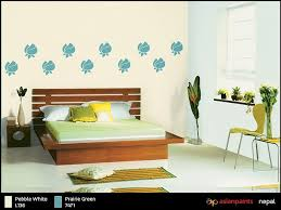 attractive wall paints nepal attractive wall paints nepal