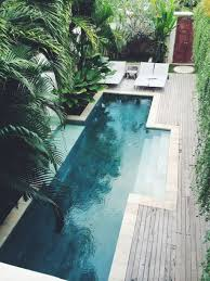 Swimming Pool Design: Backyard Narrow Swimming Pool With Greenery Walls -  Narrow Swimming Pool