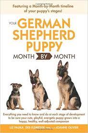 German Shepherd Weight Chart Your German Shepherd Puppy Month By Month Liz Palika Dvm