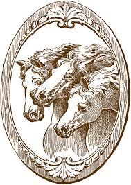 Vintage Illustrations Vintage Horse Illustrations The Graphics Fairy