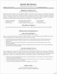 Resume Format For Banking Professional Awesome Professional
