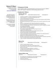 How To Build A Resume Free Impressive StaceyRMayoresume