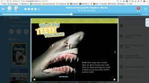 sharks anne schreiber