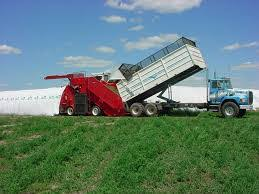 Silage Bags Canadian Hay Silage