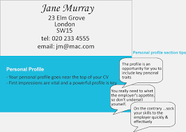 example of a personal profile on a cv okl mindsprout co example