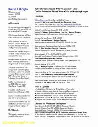 Resume Writer Service Resume Work Template
