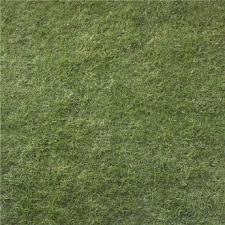 Second Life Marketplace Grass Texture