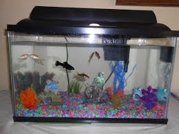 Labyrinth Fish Tank 83 Best Fish Tanks To Admire Ideas Images On Pinterest Fish