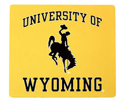 Image result for university of wyoming logo