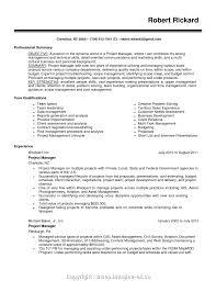 It Project Manager Technical Skills Resume Badak 1370 Ukashturka