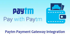 Image result for paytm payment gateway debit card