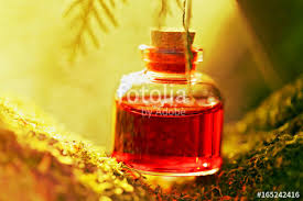 potion fantasy bottle small glass bottle with a red liquid in the moss on a blurred background magic potion herbal tincture tincture in a glass bottle