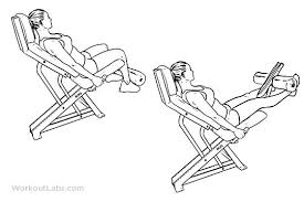 Image result for leg extension