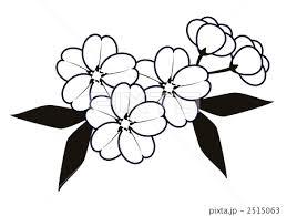 桜の花2のイラスト素材 2515063 Pixta