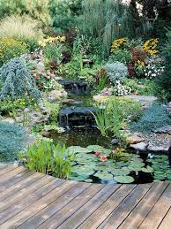 Small Picture Best 25 Pond landscaping ideas on Pinterest Water pond plants
