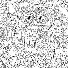 Small Picture 62 best Owl coloring pages images on Pinterest Coloring books
