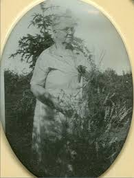 James KEYES / KEYS / KEAYS and Mary Anne BEAMOND / BEAMAN , Pioneer  Settlers in Goulbourn Township, Ontario, Canada