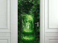 29 Best <b>3D wall</b> floor door stickers images   Door stickers, <b>3d wall</b> ...